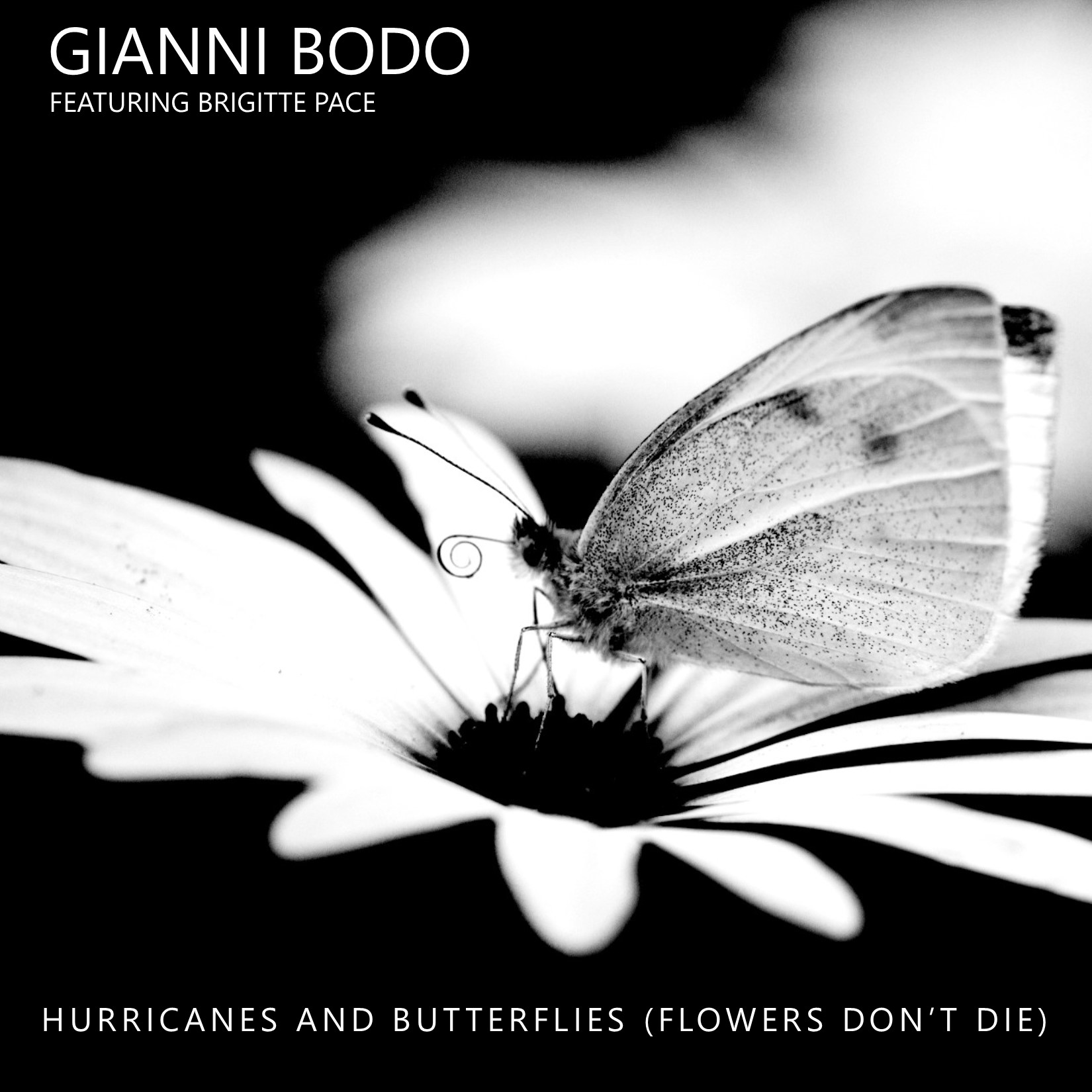 Hurricanes-and-Butterflies-cover-art